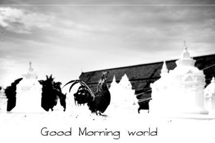 "clothesline with caption ""Good morning world"""