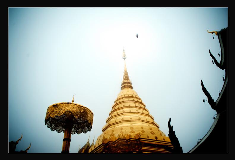 Temple01web