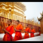 Young monks walk in a line outside a golden temple